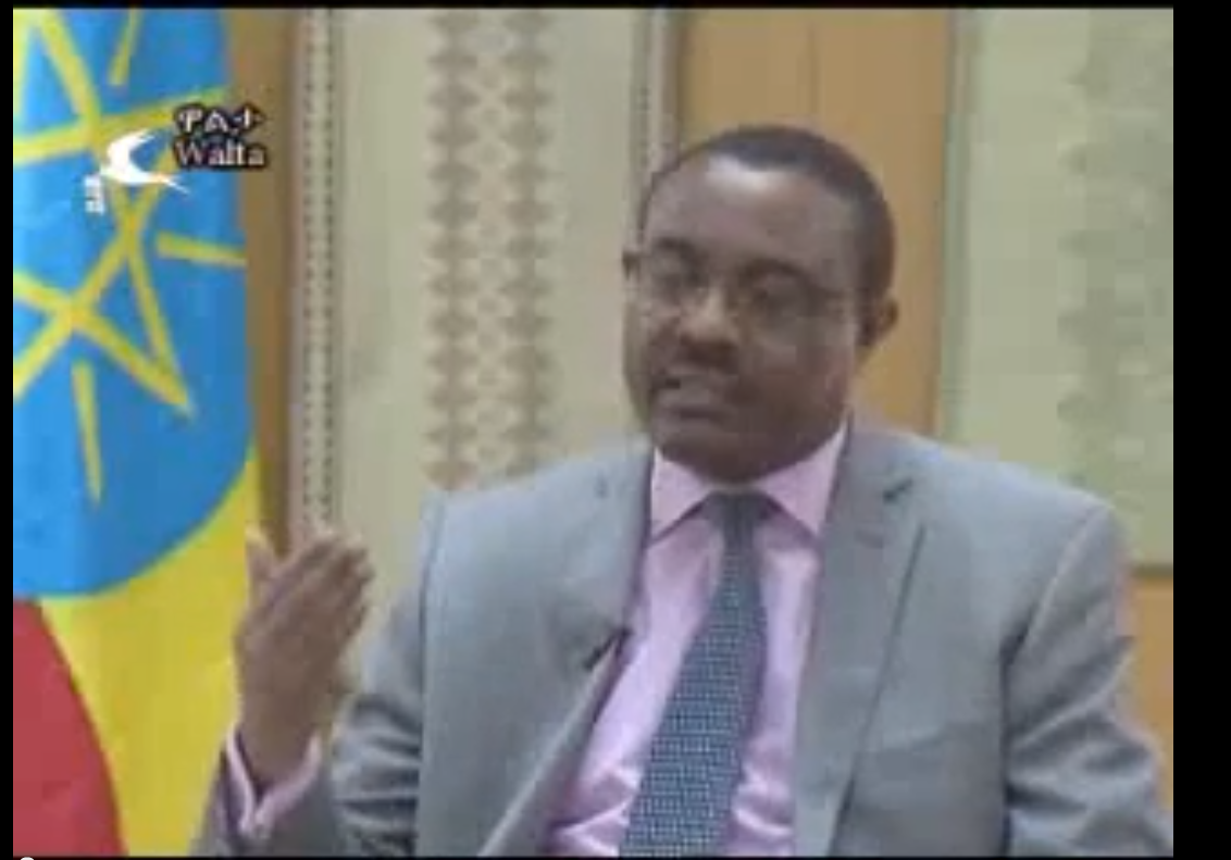 PM Hailemariam Desalegn interview with Walta2013 on Current events