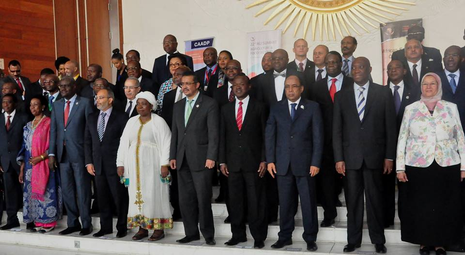 African Union Executive Council meeting opened