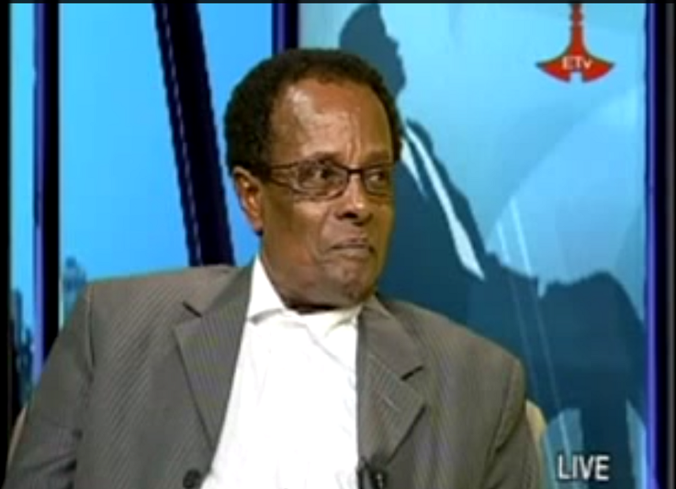 Getachew Kassa interview - ETV Arhibu April 25 2014