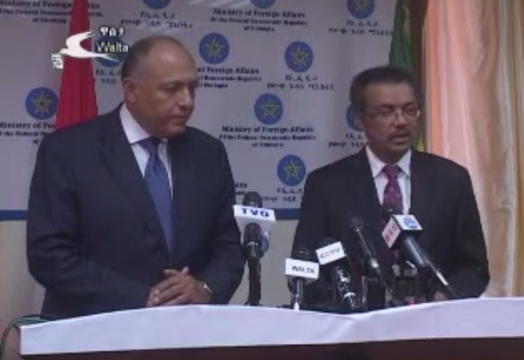 Ethiopian and Egyptian foreign minister joint press briefing